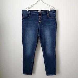 Ann Taylor Loft Hi Rise Button Fly Skinny Jeans 16